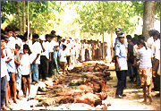 SLA soldiers killed in Mullaitivu