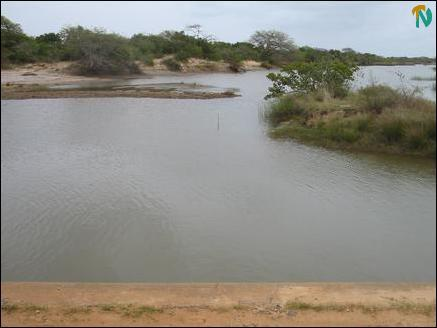Salinity in NW Vanni