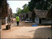 TRO shelter with thatched roof