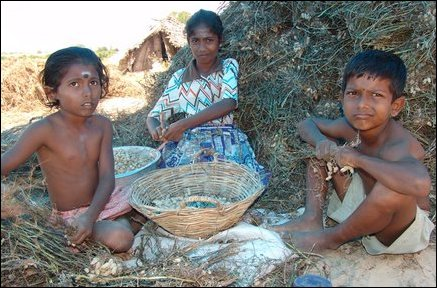 Short Essay on Child Labor