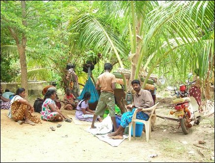 Tsunami refugees to seek shelter under trees