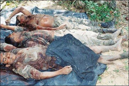 dead bodies iraq