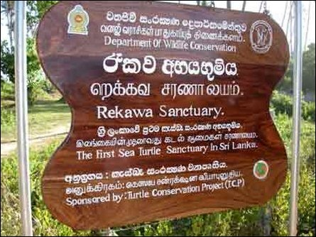 Rekawa Turtle Conservation Project