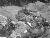 Civilian bodies in Safe Zone