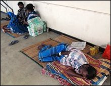 Dengue in Jaffna