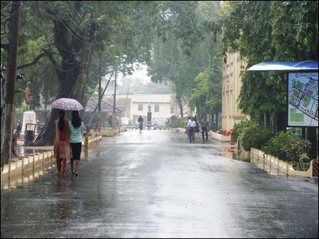 University of Jaffna, on 08 January 2013
