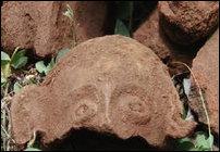 Vanni Terracotta