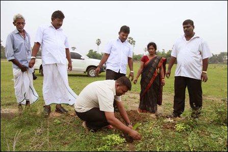 Tree planting in Jaffna