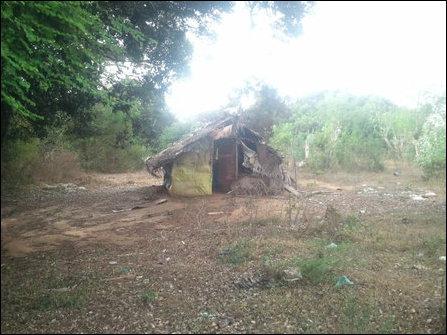 Kuruvil, abandoned hut