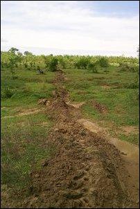 Omunugala forest reserve