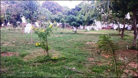 Jaffna University, Vesak, 2016