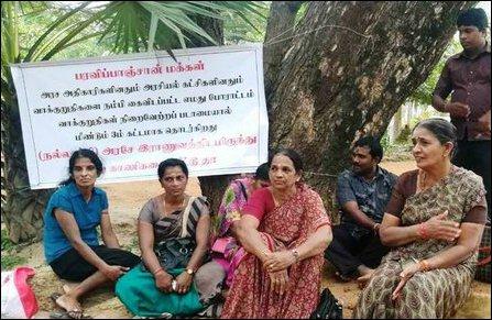 Keapppa-pulavu inspires Paravip-paangchaan